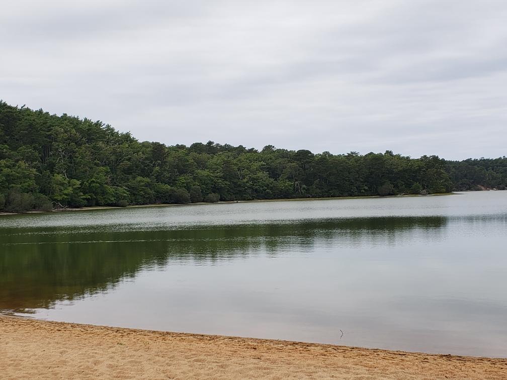 Cliff Pond Nickerson Park